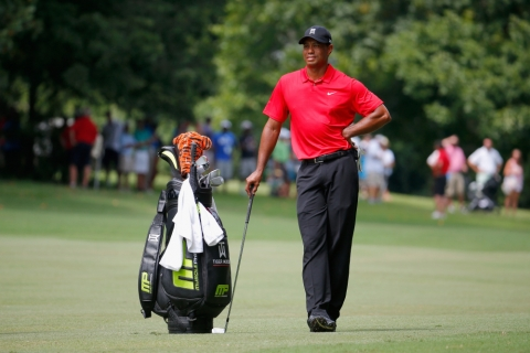 Top 5 Tiger Woods Shots Picture